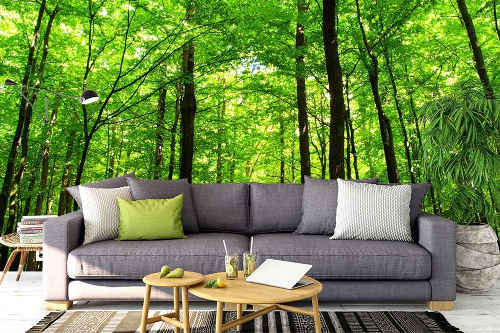 Stromy - tapety na míru - Obrázek č. 90