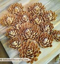 Ruže z pistáciových škrupiniek