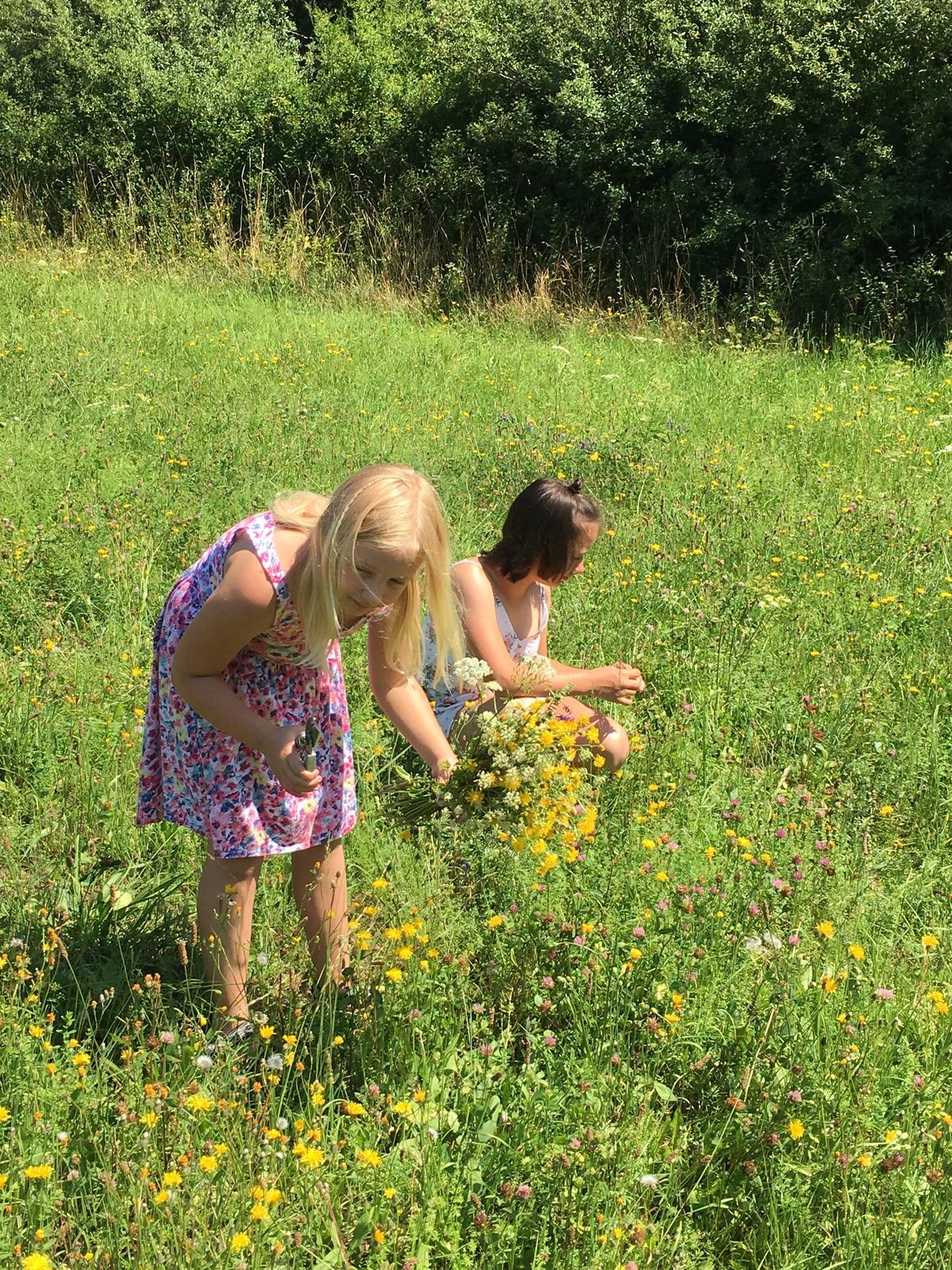 Letní luční svatba - holky pomáhaly s radostí