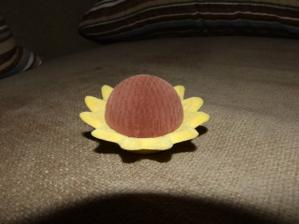 Namiesto vankušika budeme mať túto slnečnicu na obrúčky