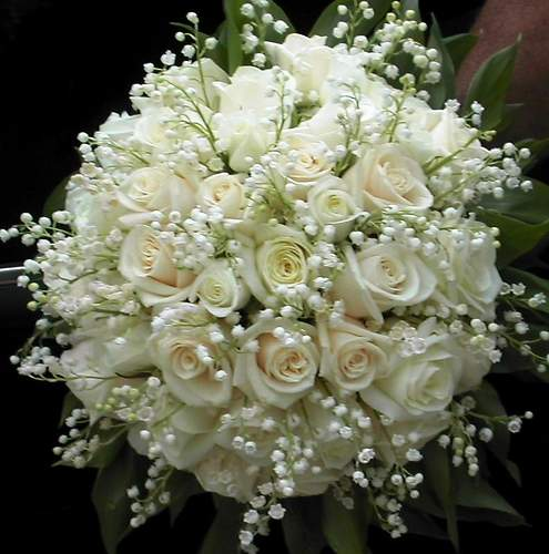 Svadobne - asi biele ruze