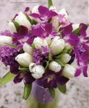 namiesto tulipánov biele ruže a lila frézie