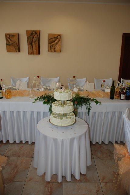 Peťka{{_AND_}}Janko - naša tortička