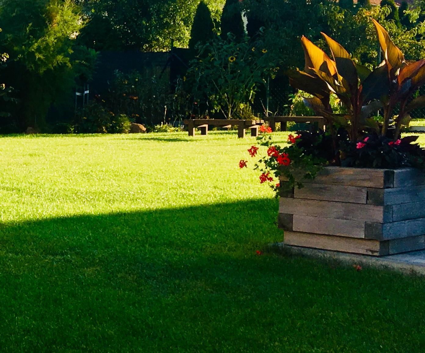 Naše zahradka s láskou ❤️ - Obrázek č. 13