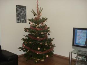 Vianoce v domčeku :)2011