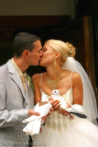 Svatební holoubci  - Obrázek č. 1