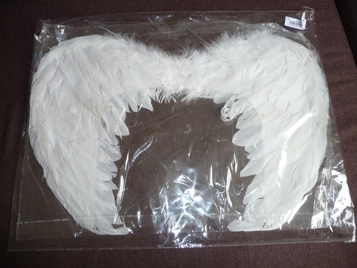 Čo už máme :-) - anjelik na fotenie :-)