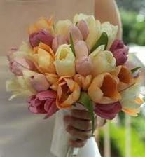 tulipány asi nechcem ale farebná kombinácia úplne úžasná