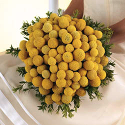 Chryzantemy ako svadobna kytica - Obrázok č. 13