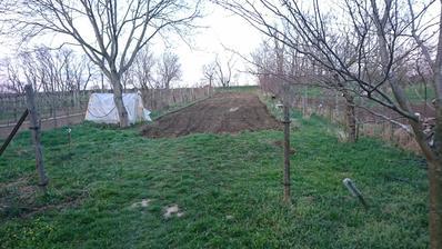 Konečne naša záhrada vyzerá ako záhrada, ide sa sadit:))