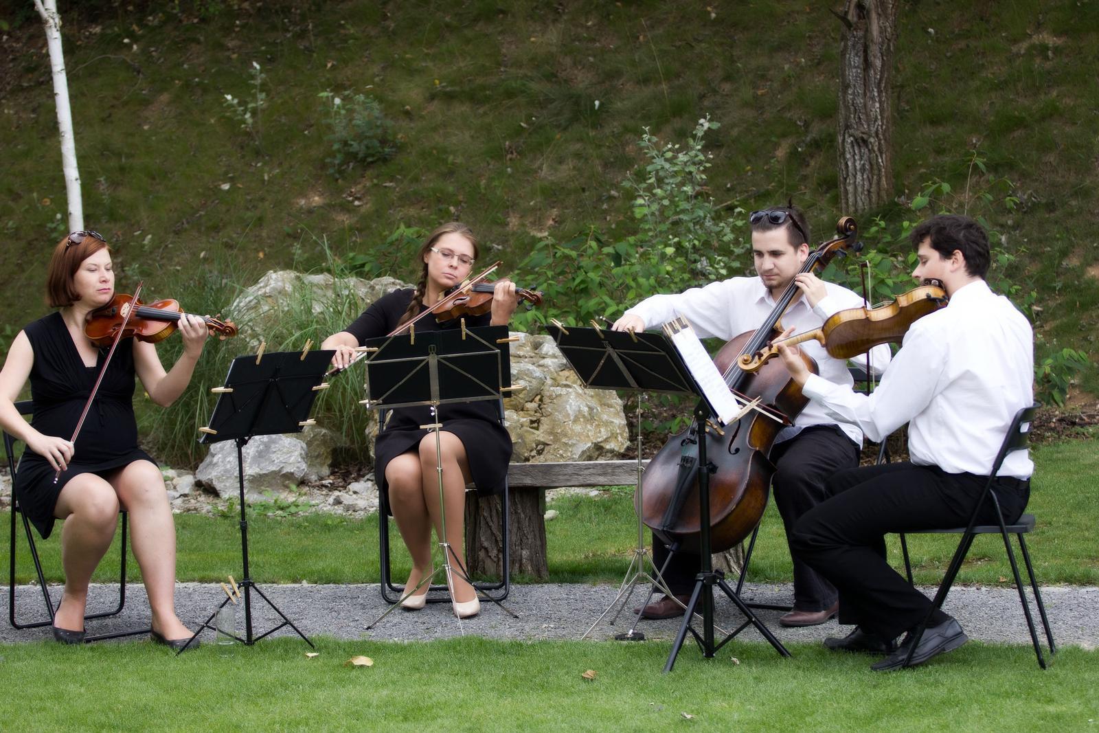 Kristina{{_AND_}}Patrik - minikoncert kvarteta :)