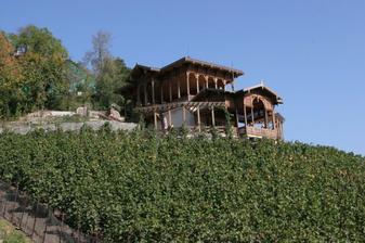 Viniční altán v babím létě :-)