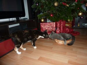Přejeme všem veselé Vánoce :-)