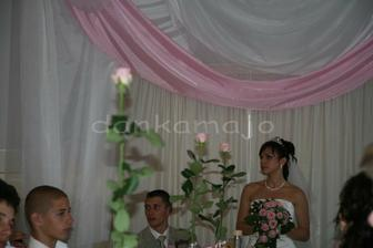 Ružičky vo vázach sme mali takéto vysoké