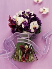 Další orchideje...