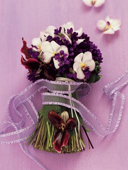 16.3.2007 - Další orchideje...