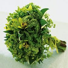 ..dalsia zelena kyticky, pre vsetky,ktore maju rady tento kvietok
