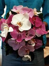 Konečně!!! Ta pravá barva a ty pravé květiny...