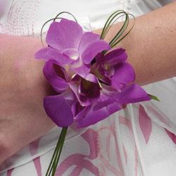 Pre svadobný gang - 2008;-) - z blizka