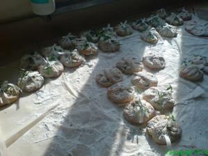 rohové koláče
