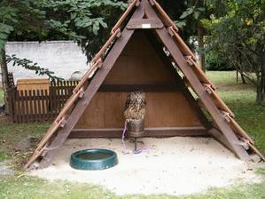 Zámok Buchlovice - záchranná stanica pre zvieratká