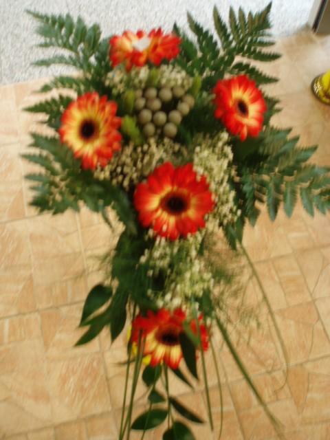 MataPato - možno takáto ale s ružami