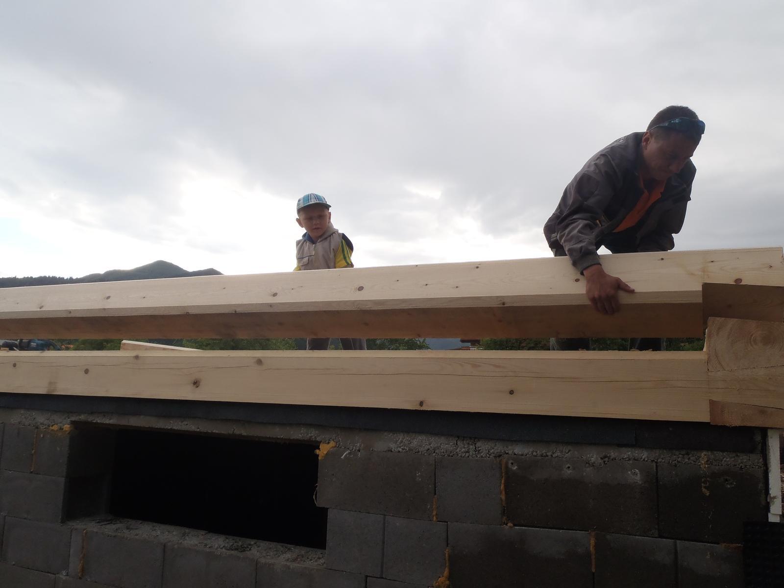 Náš veľký sen o drevenom domčeku! - Pomáááham :-)