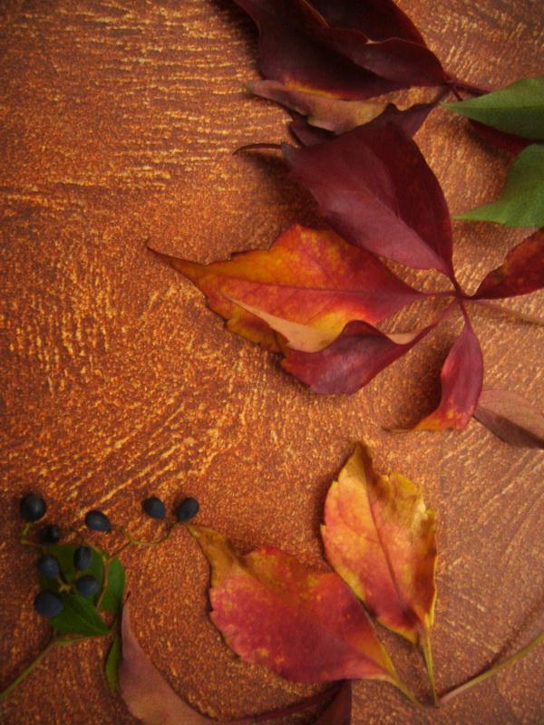 Dekory v barvach podzimu - Dekorační omítka BARVY SAN MARCO, s.r.o.