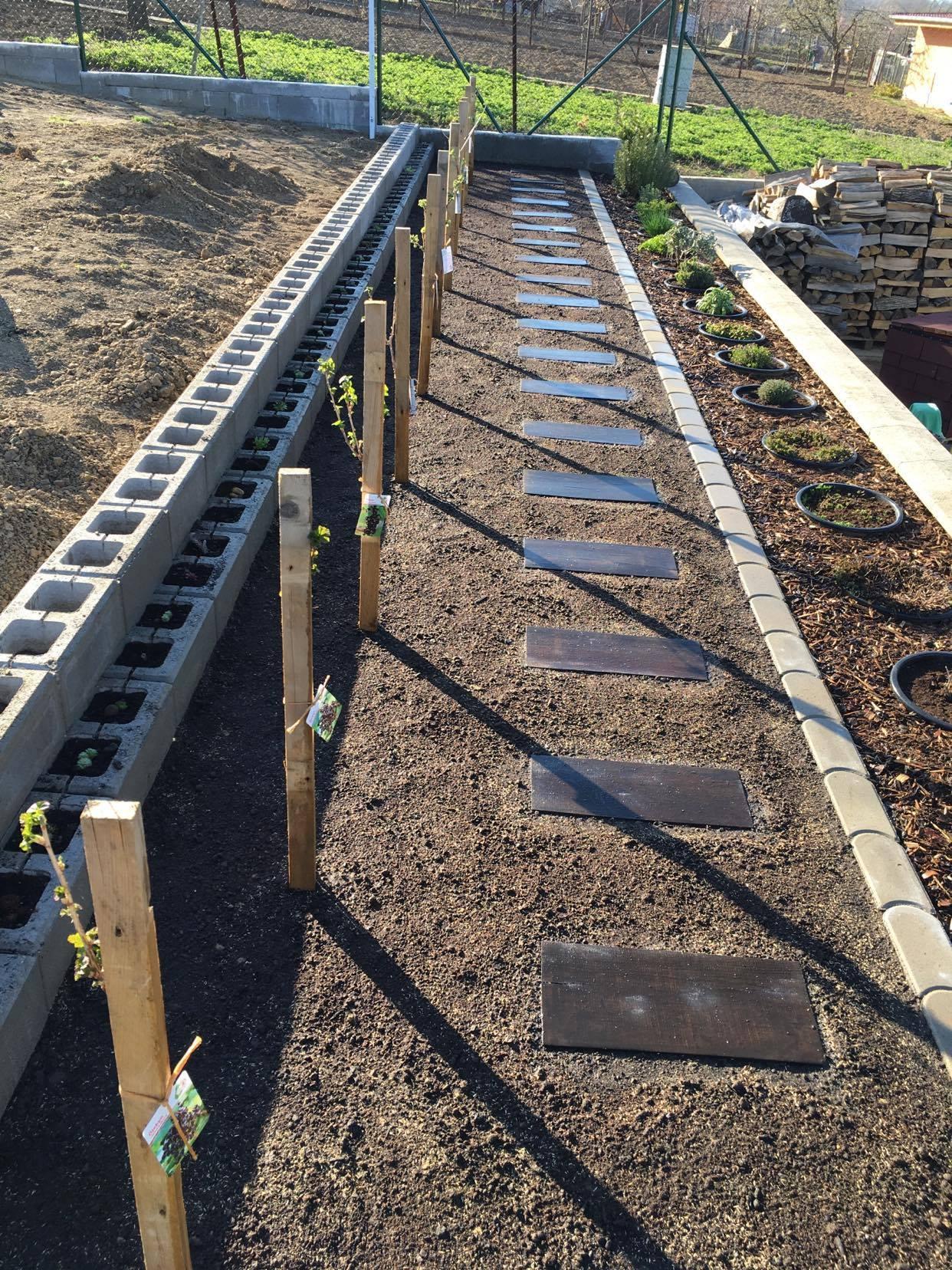 Exteriér - úžitková časť záhrady - ... šlapáky zapustené do zeme, trávička vysadená, tak nech krásne rastie :-)