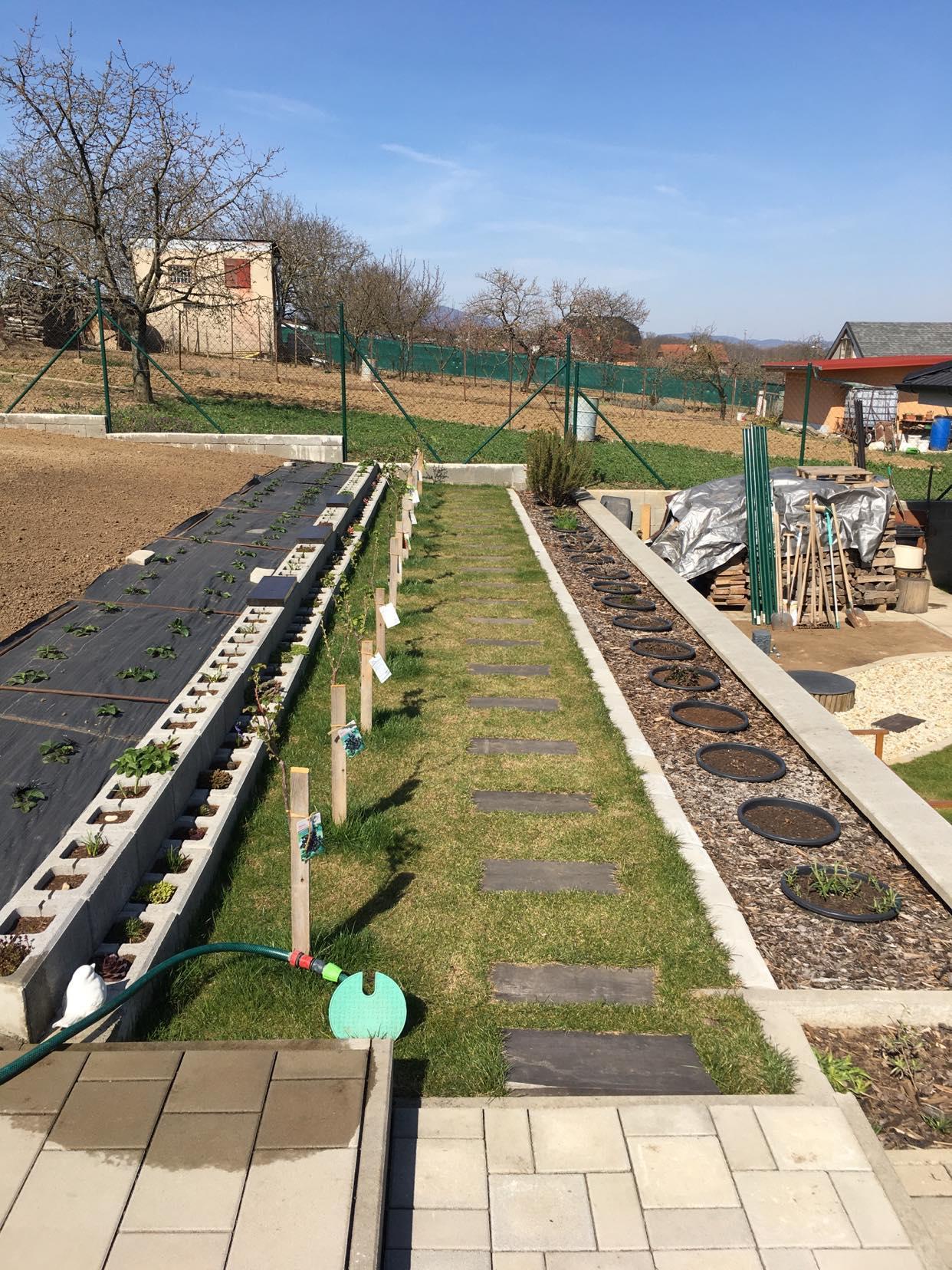 Záhrada - rok 2021 - Obrázok č. 9