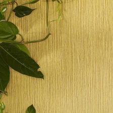 jeden kontrastný pás tapety,ktorý ukončí kuchyňu, len v tmavohnedej farbe, ako drevo, budem tam mať poličku s bielou orchideou