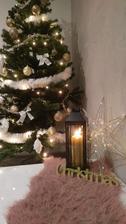 Vánoční nálada :-)