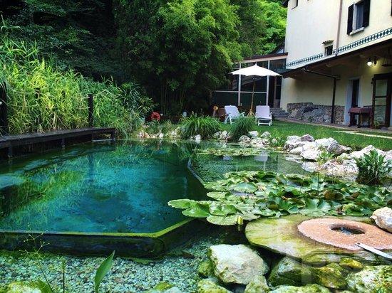 Voda v záhrade - Obrázok č. 23