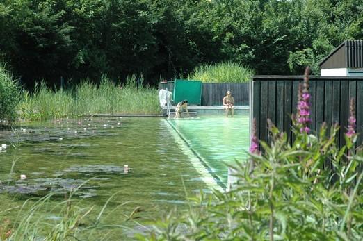 Voda v záhrade - Obrázok č. 24