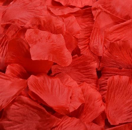 Plátky růží - Obrázek č. 1