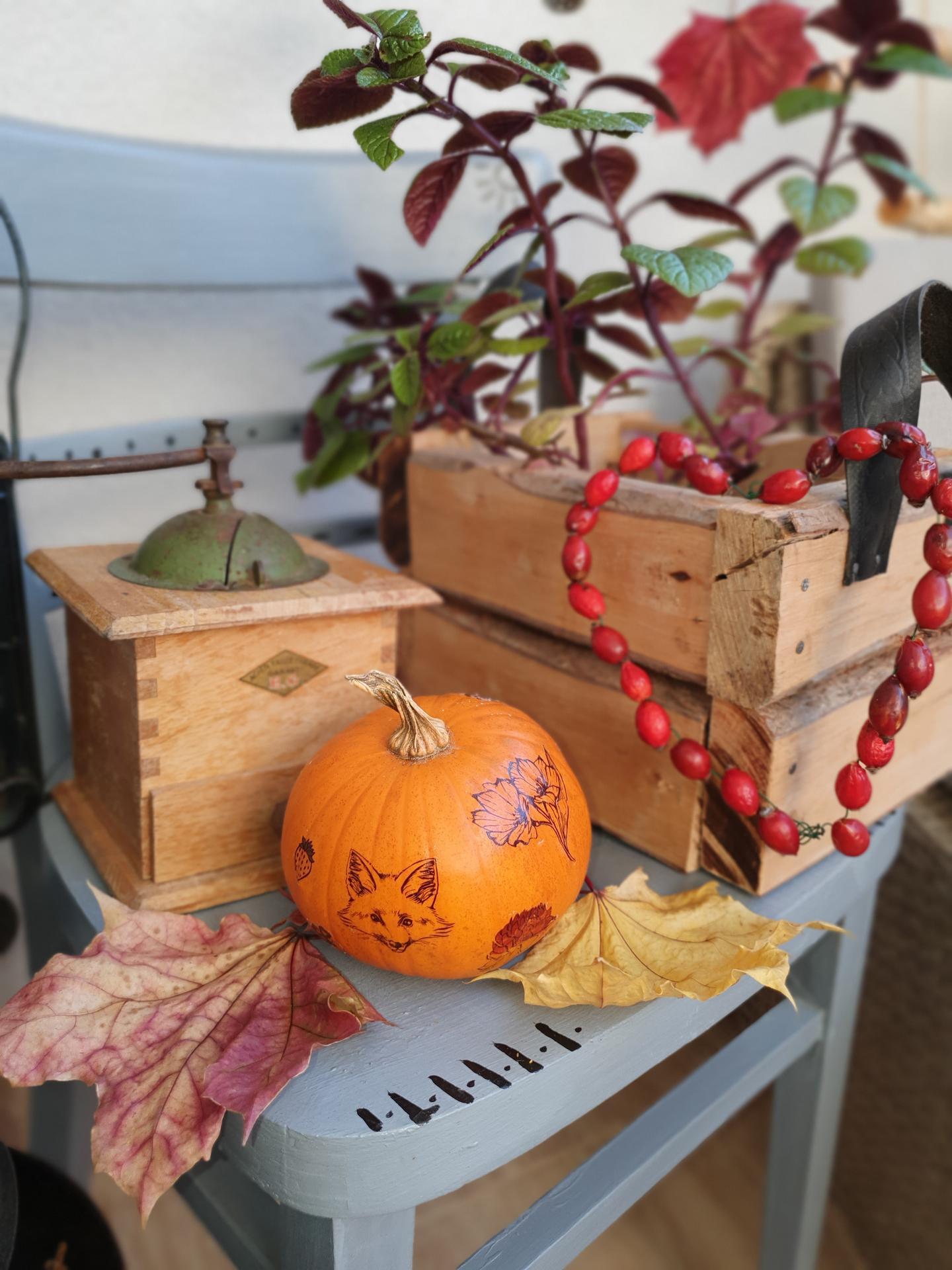 Jeseň na balkóne - Obrázok č. 31
