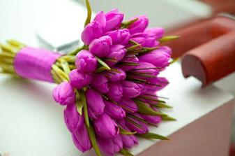 Mám ráda tulipány