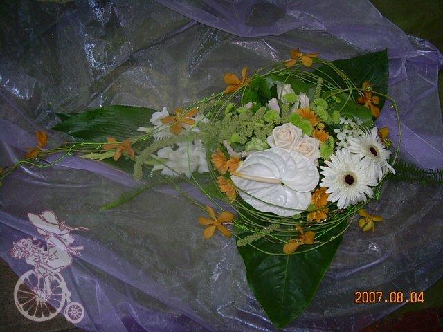 A&L 16.05.2009 - Obrázok č. 33