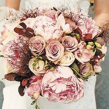 Pivonky, ruže, orchidei,...