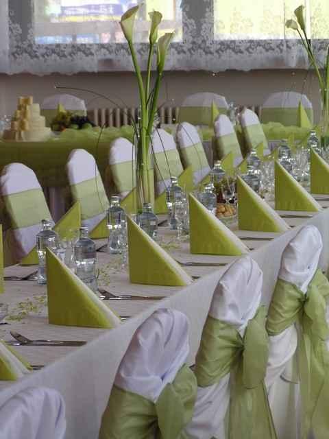Naša svadba...29.8.2009 - nejak takto