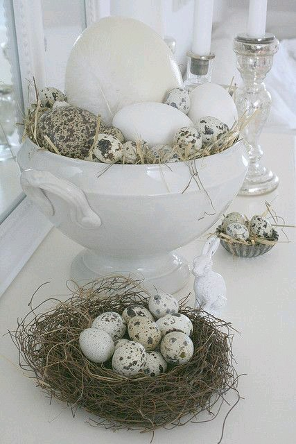 🐣 Easter time 🐤🌷🌼 - Obrázok č. 11