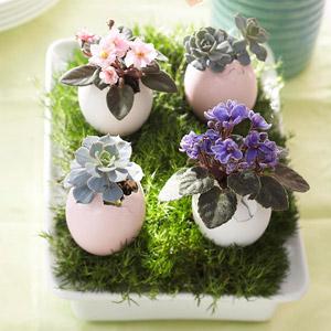 🐣 Easter time 🐤🌷🌼 - Obrázok č. 31