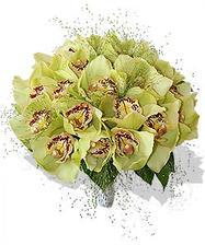 Kytice z orchideí do zelena