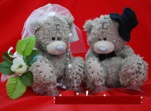 na autíčka nevěsty a ženicha :-)