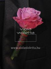 Korsáž pro svědky...růžová růže s vínovím něcím...