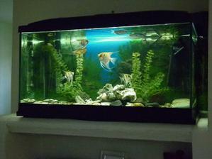 Nove 120l akvarium s kompletnou vybavou