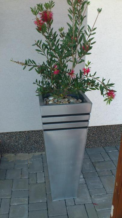 Zahrada - Obrázek č. 2