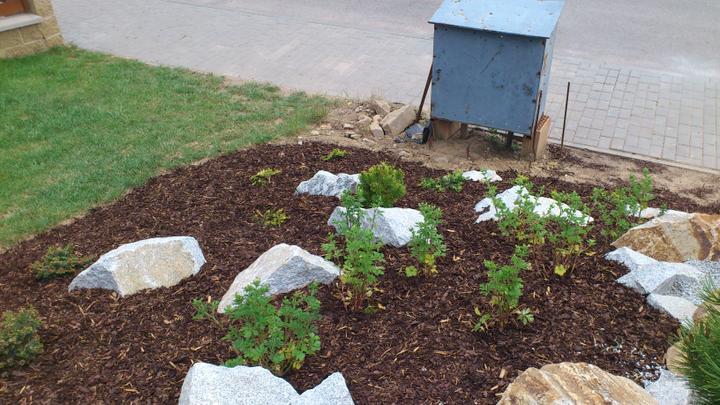 Zahrada - Tyto rostliny se budou měnit...
