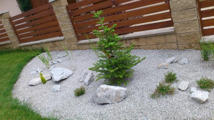 Zahrada - Přidaný mini cedr..