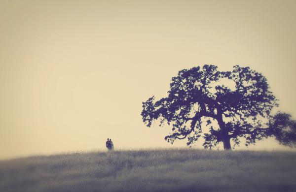 Ide sa do lesa... A do ovocného sadu - Obrázok č. 5